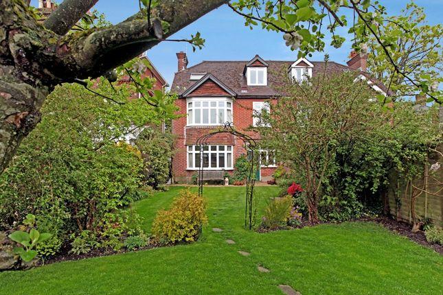 Thumbnail Semi-detached house to rent in Elm Grove Road, Salisbury