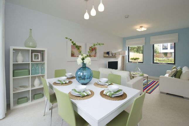 """Semi-detached house for sale in """"Bluebell"""" at Meadlands, York"""