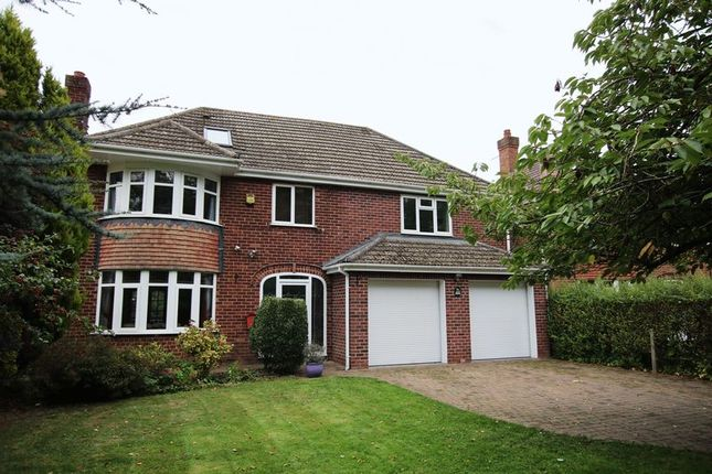 Thumbnail Detached house to rent in Burton Road, Lincoln