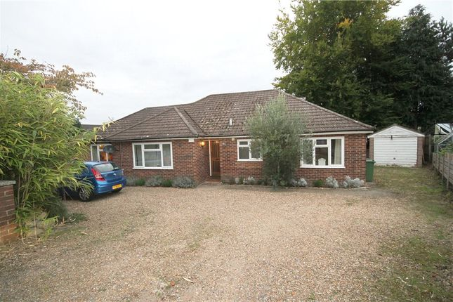 Thumbnail Bungalow to rent in Coach House Close, Frimley, Camberley, Surrey