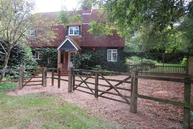 Thumbnail Property to rent in Beechwood Lane, Burley, Ringwood