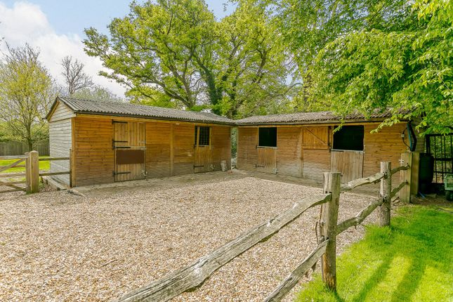 Equestrian of Guildford Road, Rudgwick, Horsham, West Sussex RH12
