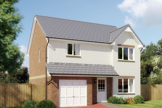 """Thumbnail Detached house for sale in """"The Balerno"""" at Lanton Road, Off Drysdale Avenue, Larbert"""