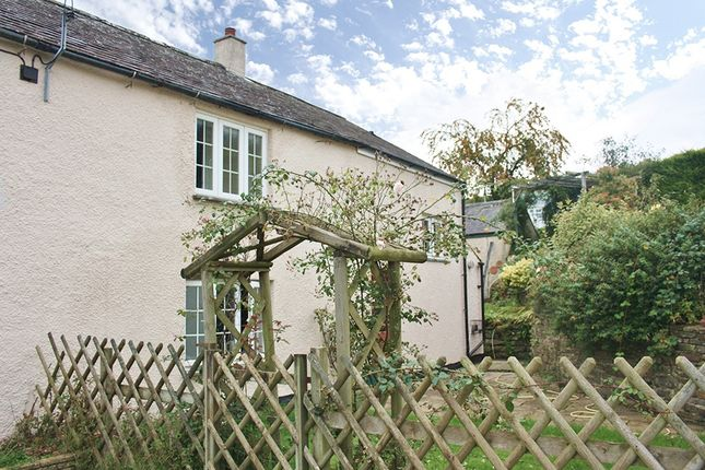 Thumbnail Semi-detached house to rent in Townlake, Near Tavistock