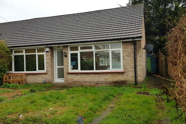 Thumbnail Bungalow to rent in Clarence Road, Croydon
