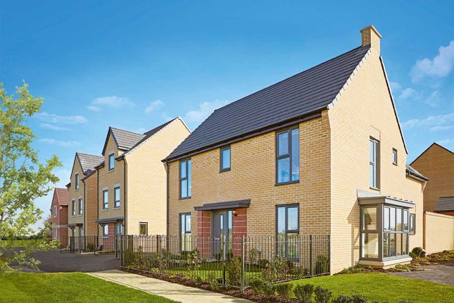 """Thumbnail Detached house for sale in """"The Clarence"""" at Heron Road, Northstowe, Cambridge"""