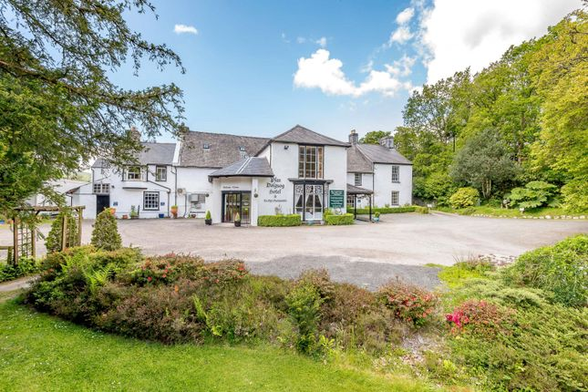 Thumbnail Detached house for sale in Felingerrig, Machynlleth, Powys