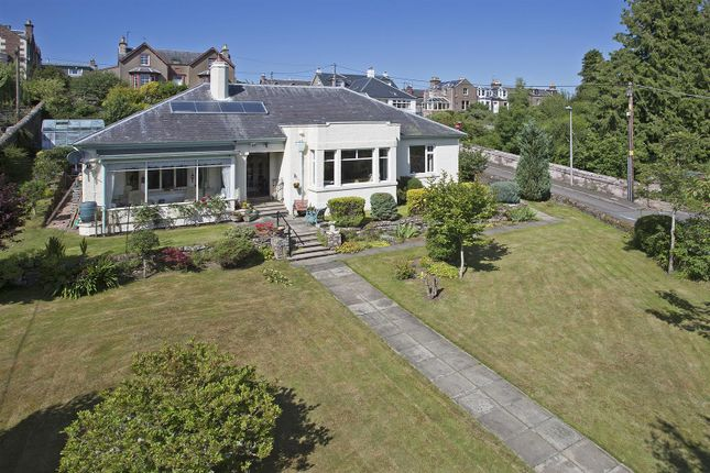 Thumbnail Detached bungalow for sale in St. Andrew, Bamff Road, Alyth