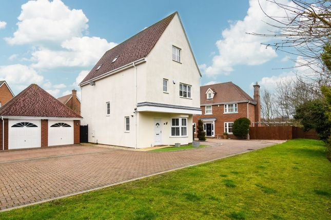 Thumbnail Detached house for sale in Quilberry Drive, Braintree