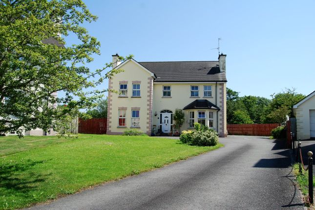 Thumbnail Detached house for sale in Old Mill Avenue, Armagh