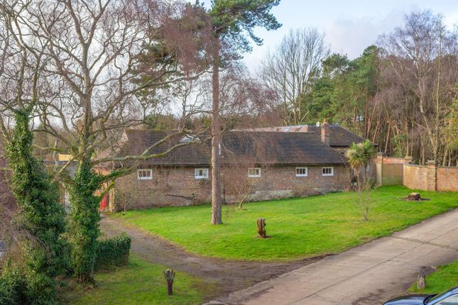 Thumbnail Bungalow for sale in Charing, Ashford