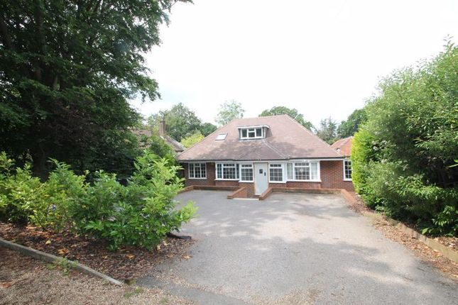 Thumbnail Detached bungalow for sale in Knob Field, Abinger Hammer, Dorking