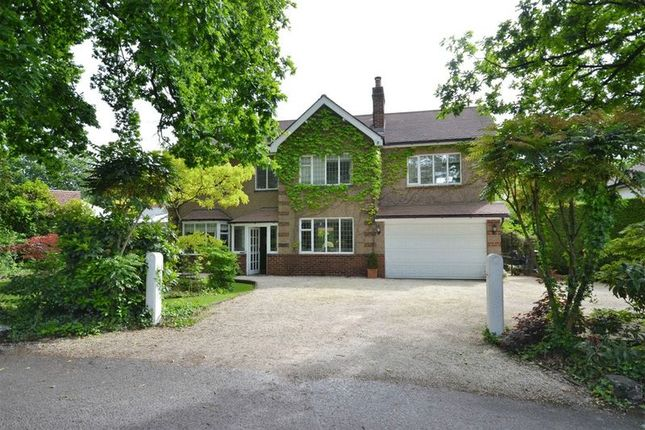 Thumbnail Property for sale in Brentwood, Shaw Hill Drive, Whittle Le Woods