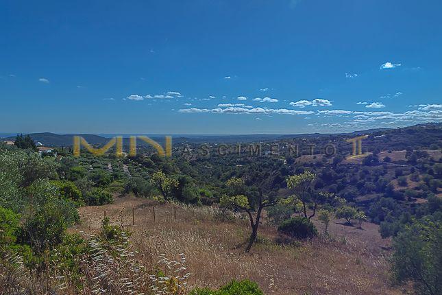 Land for sale in Vale Da Rosa, Loulé (São Sebastião), Loulé, Central Algarve, Portugal