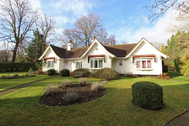 Thumbnail Detached bungalow for sale in Silver Lane, Purley