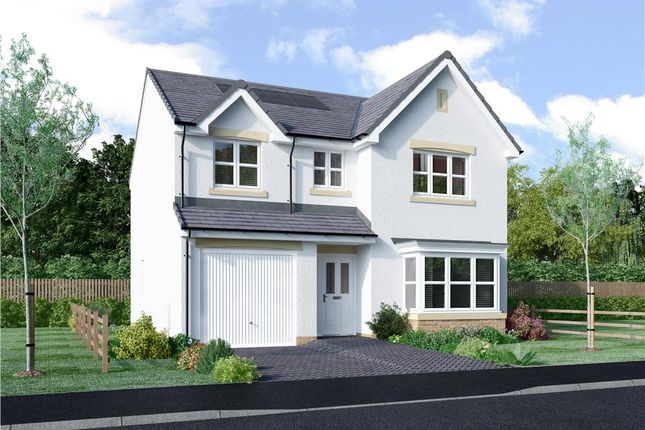 "Thumbnail Detached house for sale in ""Murray"" at Queen Mary Avenue, Clydebank"