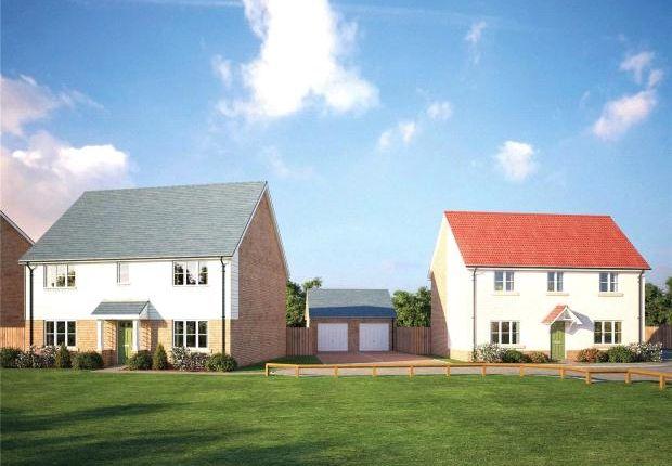 Thumbnail Detached house for sale in Sapphire Gardens, Worlington Road, Mildenhall, Bury St Edmunds