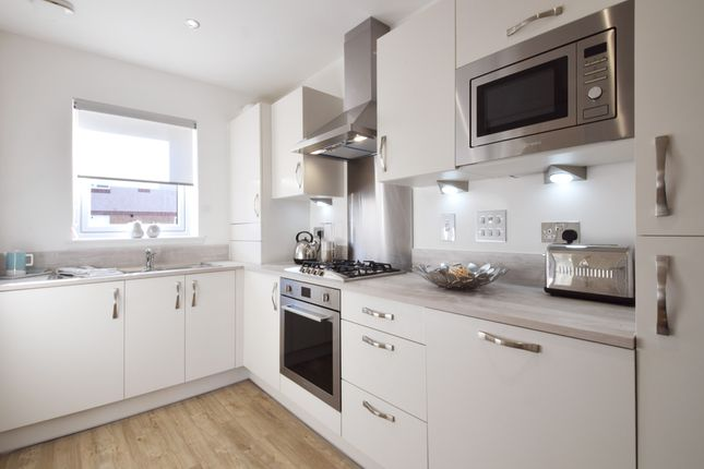 Thumbnail Terraced house for sale in 1 Nethergray Entry, Dykes Of Gray, Dundee
