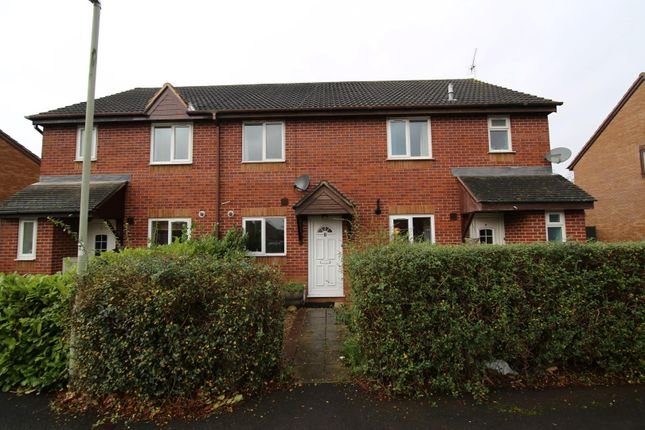 Thumbnail Semi-detached house to rent in Magnolia Court, Tiverton