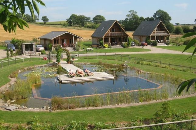 Thumbnail Commercial property for sale in Oasis Lodges, Aylton, Ledbury, Herefordshire