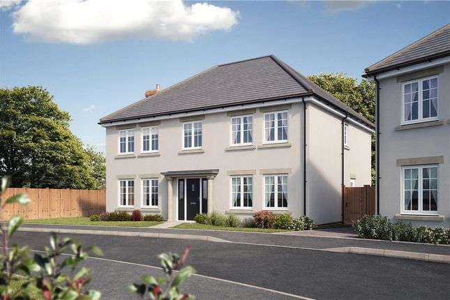 Thumbnail Detached house for sale in Ramsdell, Ashford Hill Road, Ashford Hill