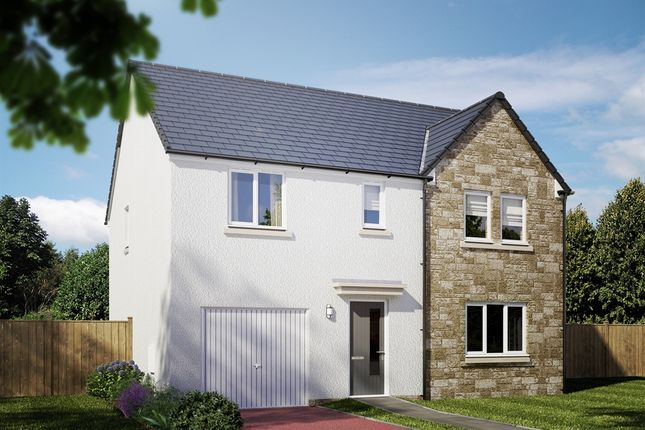 """Thumbnail Detached house for sale in """"The Warriston"""" at Cotland Drive, Falkirk"""