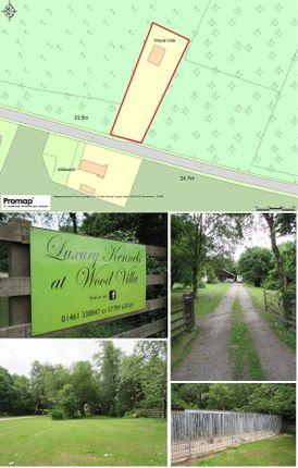 Thumbnail Land for sale in Wood Villa Estate & Kennels, Dumfries