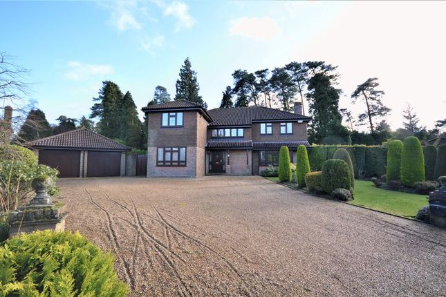Thumbnail Detached house to rent in Hillgarth, Hindhead