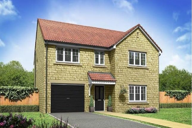 """Thumbnail Detached house for sale in """"The Harley"""" at Blackberry Road, Frome"""
