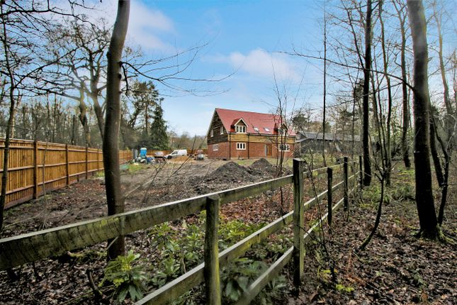 Thumbnail Detached house for sale in Old Potridge Road, Winchfield, Hampshire