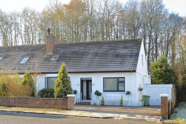 Thumbnail Semi-detached bungalow for sale in Whinhill Road, Alloway, Ayr