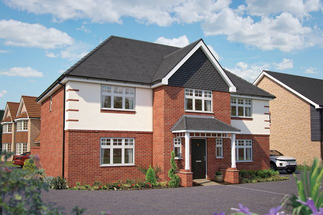 """Thumbnail Detached house for sale in """"The Truro"""" at Hadham Road, Bishop's Stortford"""