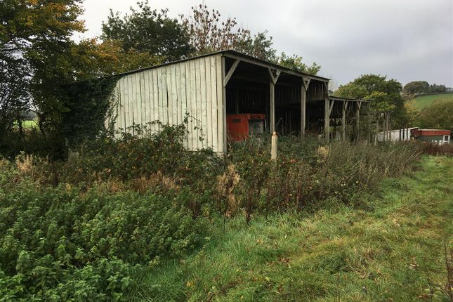 Thumbnail Land for sale in Hill Farm, Cheriton Bishop, Exeter