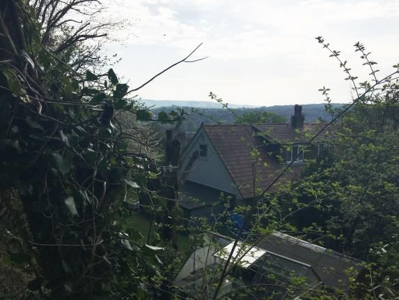Rear Views of Mill Road, Lewes, East Sussex BN7