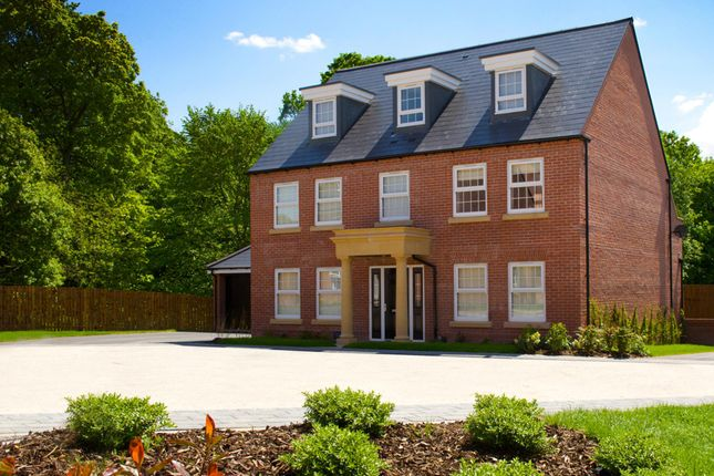 """Thumbnail Detached house for sale in """"Balshaw"""" at Bodington Way, Leeds"""