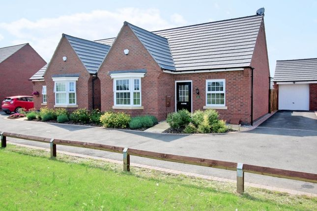 Thumbnail Bungalow for sale in Netherfield Drive, Sapcote, Leicester