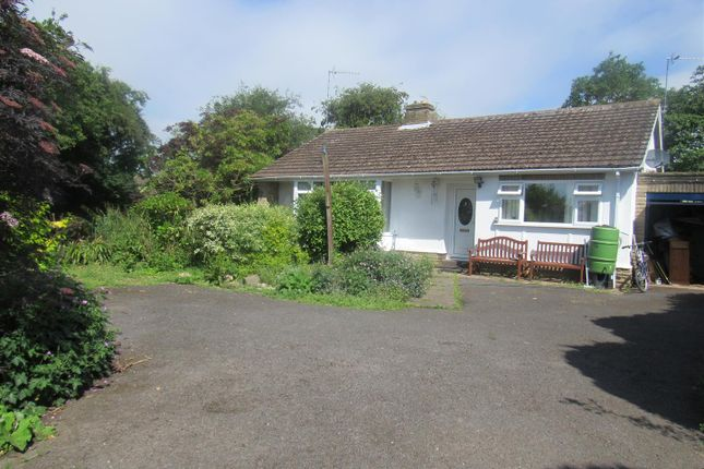 Thumbnail Detached bungalow for sale in Carmen Grove, Groby, Leicester