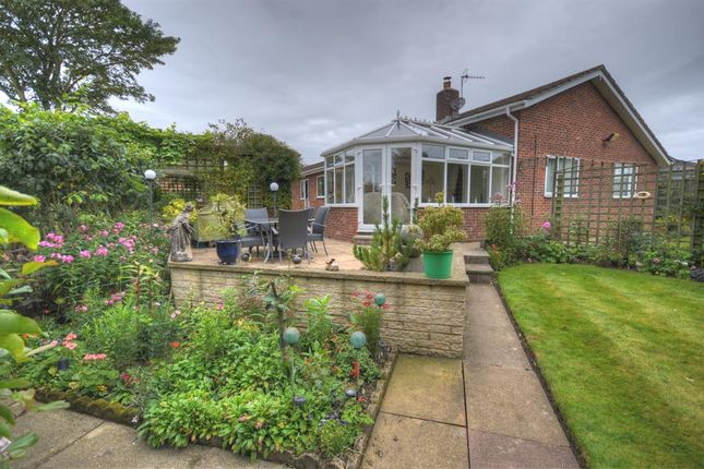 Thumbnail Detached bungalow for sale in Malton Road, Hunmanby, Filey