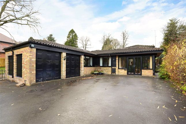 Thumbnail Semi-detached bungalow for sale in Kings Hill, Beech, Alton, Hampshire