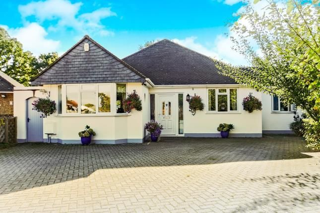 Thumbnail Bungalow for sale in Oakview Grove, Shirley, Croydon, Surrey