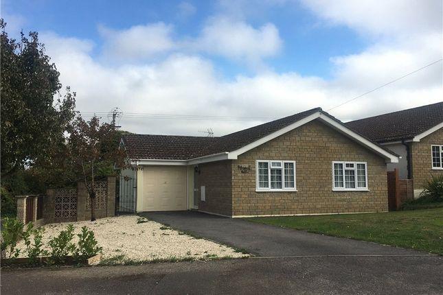 Thumbnail Bungalow to rent in Ashley Road, Marnhull, Sturminster Newton, Dorset
