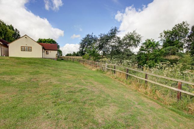 Thumbnail Bungalow to rent in Cods Hill, Beenham, Reading