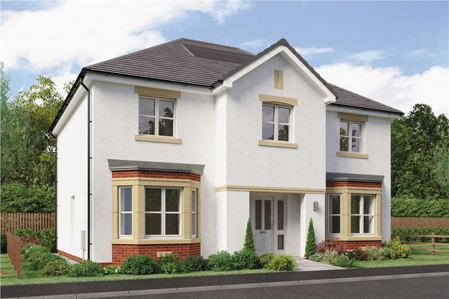 "Thumbnail Detached house for sale in ""Chichester"" at Red Deer Road, Cambuslang, Glasgow"