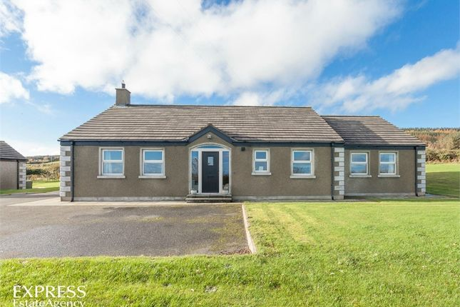 Thumbnail Detached bungalow for sale in Ballyculter Road, Downpatrick, County Down