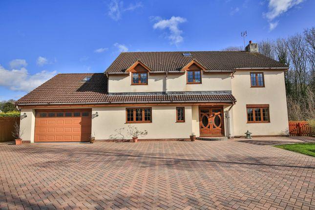 Thumbnail Detached house for sale in Lake House, Crick, Caldicot