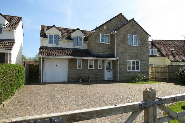 Thumbnail Detached house for sale in Back Lane, Chapel Allerton, Axbridge