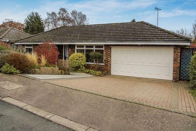 Thumbnail Detached bungalow for sale in Oaklea, Welwyn