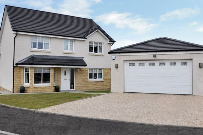 Thumbnail Detached house for sale in The Tay At Bellside Brae, Cleland