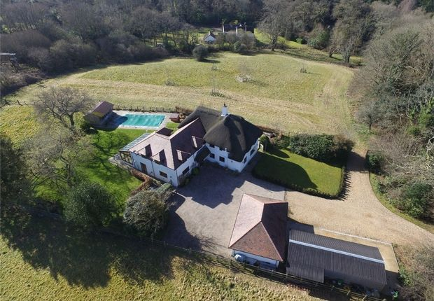 Thumbnail Detached house for sale in Hangersley, Ringwood, Hampshire