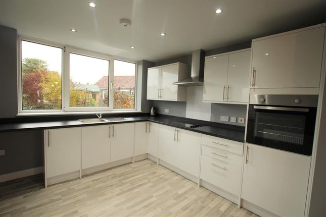 Thumbnail Bungalow to rent in Tune Street, Osgodby, Selby
